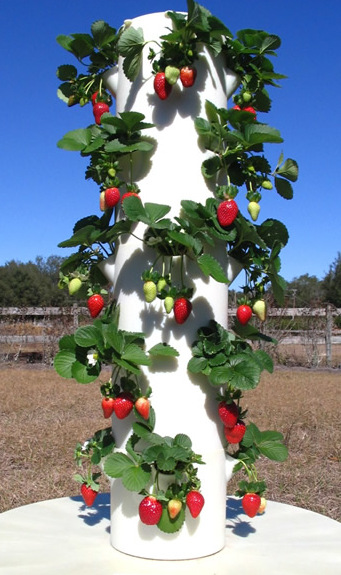 The Complete Growing System Includes Tower Garden