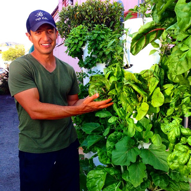Our Commercial Clients La Urban Farms